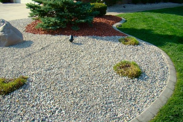 Small river rock and areas of red lava rock in a well maintained landscape bed.