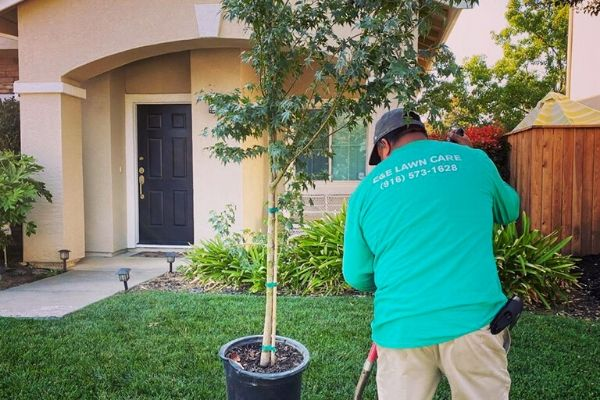 Alvero of E&E Lawn Care working in a teal shirt