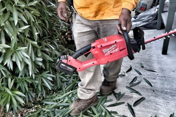 Alvero using red hedge trimmers