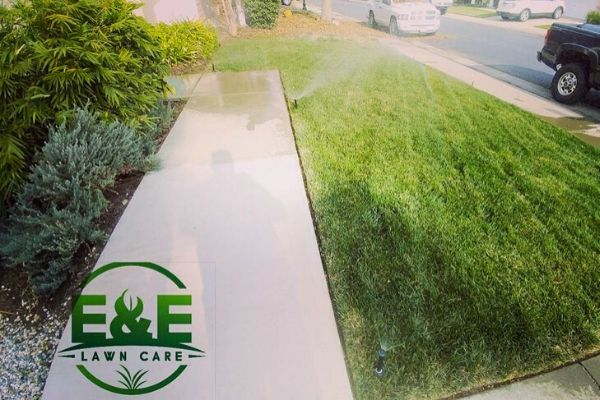E&E Lawn Care logo over sod picture with sprinklers