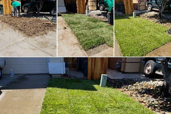 A collage of 4 pictures taken during a sod installation by E&E Lawn Care that shows the process and results from the service.